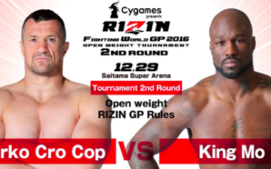 Resultados Rizin World Grand Prix 2016