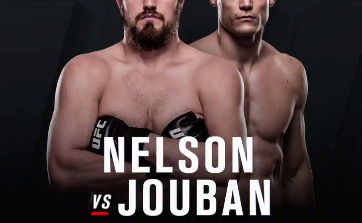 gunnar-nelson-vs-alan-jouban