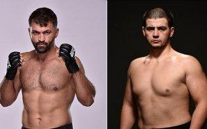 Junior Albini enfrenta Andrei Arlovski no UFC Fight Night 120