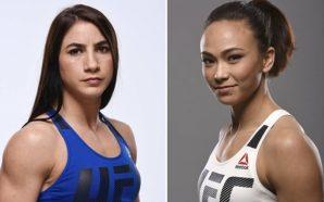 Tecia Torres enfrenta Michelle Waterson no UFC 218