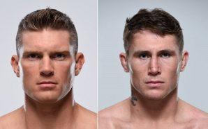Stephen Thompson enfrenta Darren Till no UFC Fight Night 127,…