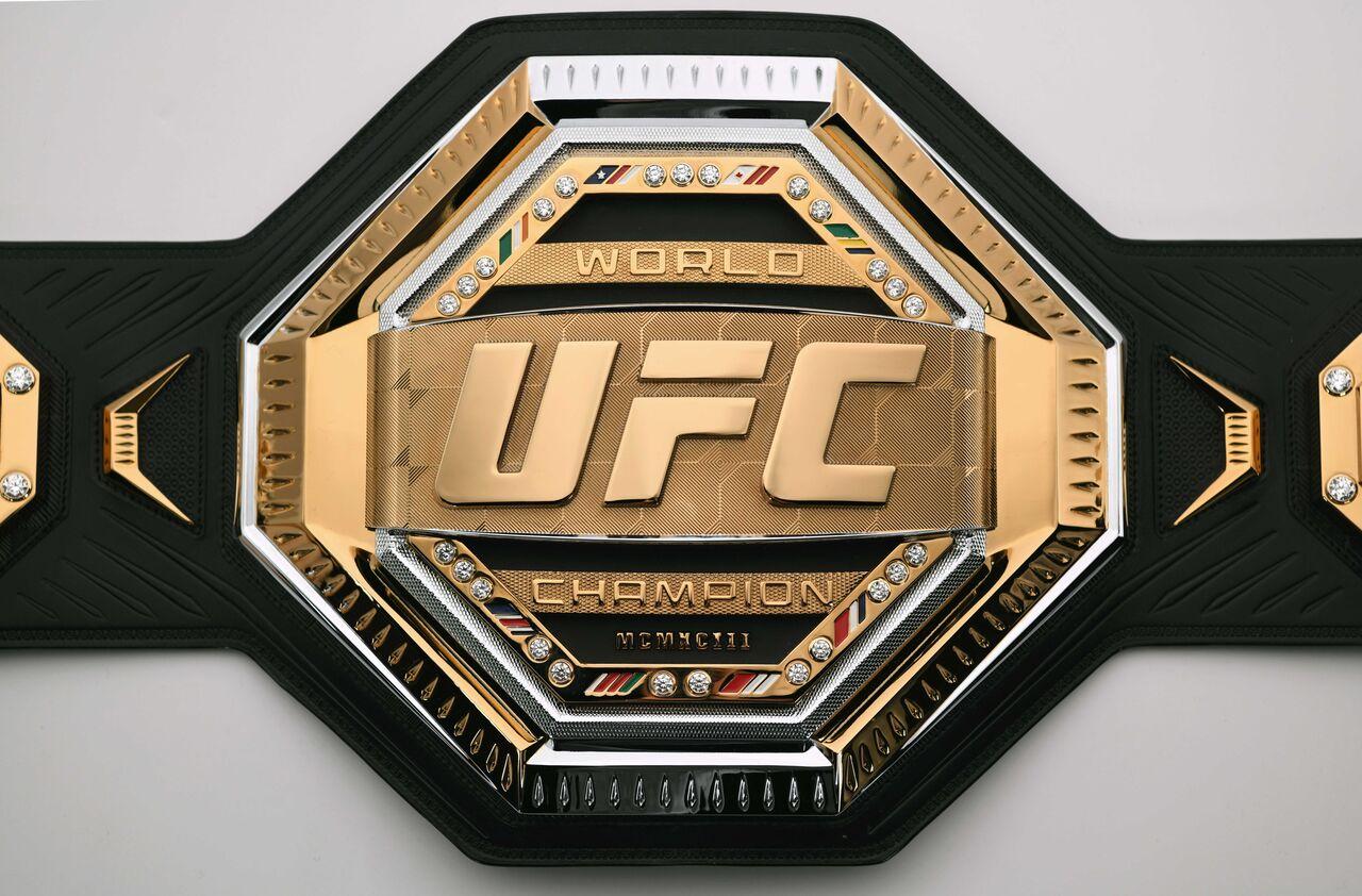 Resultado de imagem para MMA - UFC 249 - LOGOS